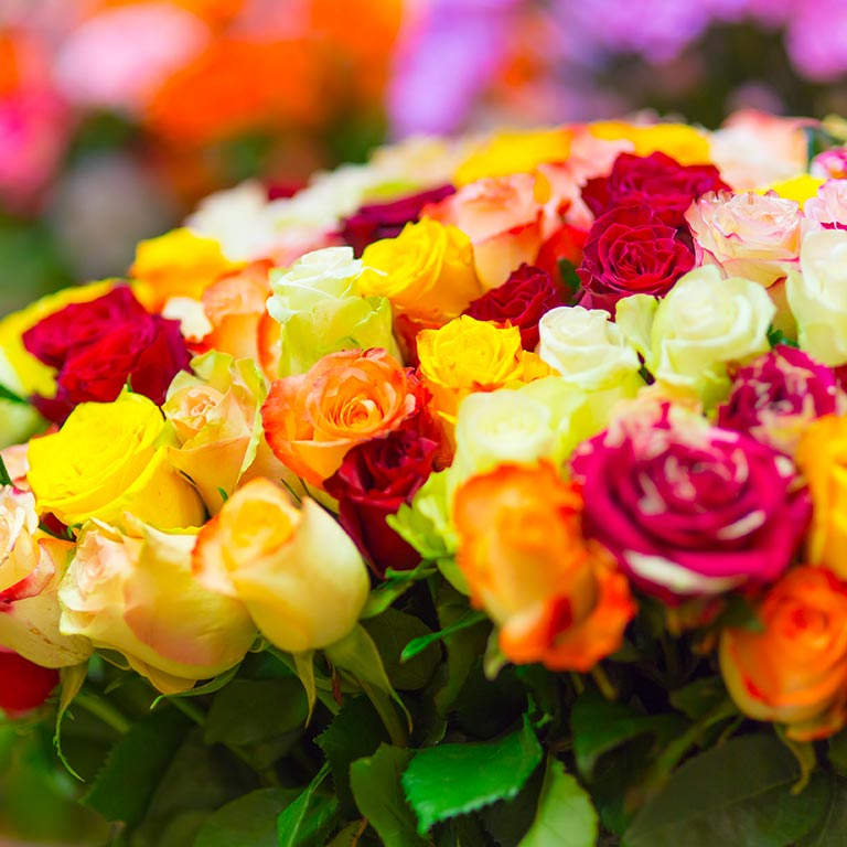 A bouquet of colorful flowers